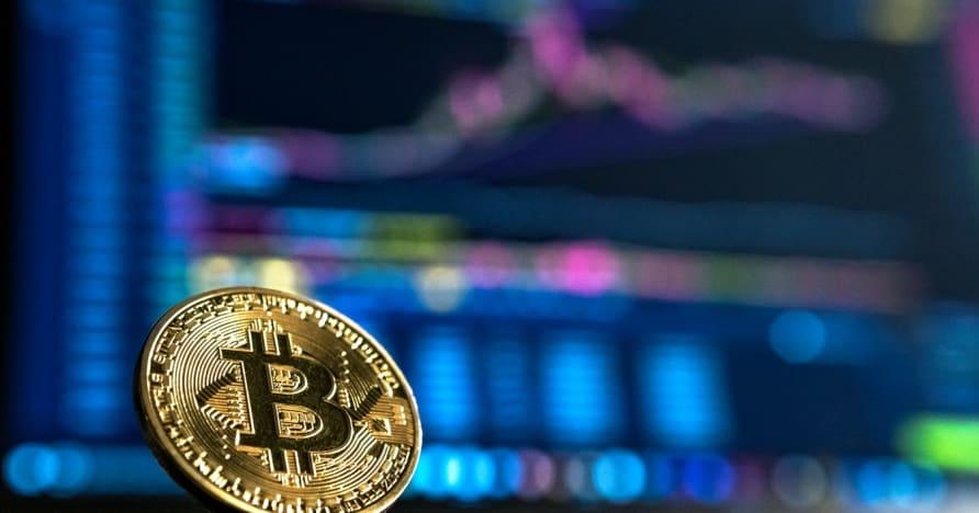 Blackjack mit Bitcoin spielen | Lohnt es sich?
